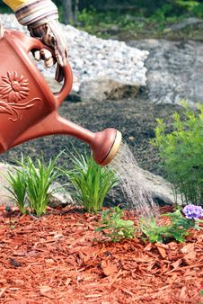 Free Gardener Waters Flowers Stock Photography - 14567902