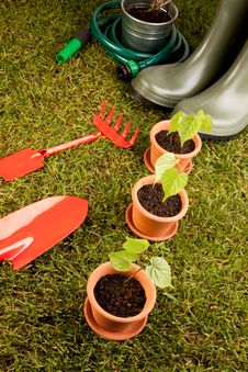 Free Gardening Concept On Grass Stock Photography - 14568122