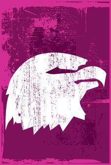Free Eagle Royalty Free Stock Image - 14568386