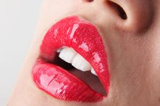 Free Lips Stock Photo - 14568400