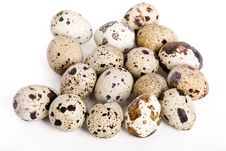 Free Quail Eggs Royalty Free Stock Image - 14568966
