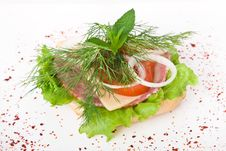 Free Dietetic Sandwich Stock Photos - 14568983