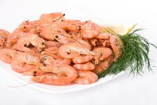 Boiled Shrimps On A Plate Stock Images