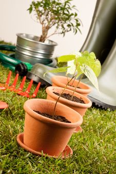 Free Gardening Concept Stock Image - 14569051