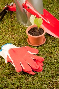 Gardening Concept Royalty Free Stock Photography
