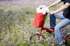 Free Bicycle Trip With Flowers Stock Photos - 14569523