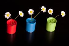 Free Flower Pot With Paint Royalty Free Stock Photography - 14569647