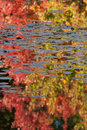 Free Autumn Reflections Royalty Free Stock Image - 14573316