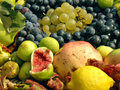 Free Fruit Collection (grapes, Figs, Citrus) Stock Photo - 14577730