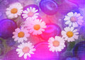 Free Stylized Floral Picture Stock Photography - 14579192