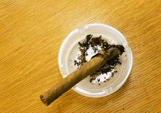 Free Cigar In An Ashtray Stock Photos - 14570453