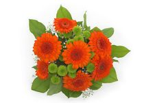 Free Bouquet From Orange Gerbera. Stock Photography - 14570642