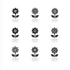 Free Set Of 9 Flower Icons Royalty Free Stock Images - 14571439