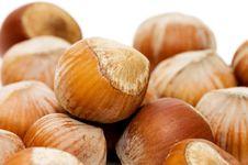 Heap Of Hazelnuts On White Background Royalty Free Stock Images