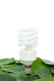 Free Energy Saving Light Bulb On Green Leaves Stock Images - 14572794