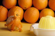 Free Orangeman Porter Royalty Free Stock Photos - 14573038