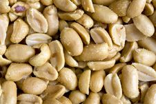 Free Salted Peanuts Royalty Free Stock Photography - 14573737
