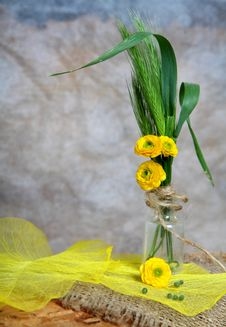 Free Still-life - Bouquet With Flowers In Phial Royalty Free Stock Image - 14575046