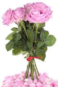 Free Bouquet Of Roses Stock Image - 14575241