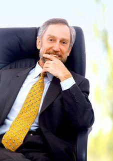 Free Businessman Isolated On White Stock Photo - 14576140