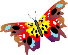 Free Butterfly Stock Image - 14576381