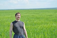 The Field Of Green Wheat, And A Man On It Royalty Free Stock Photo