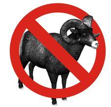 Free No Sheep Allowed Royalty Free Stock Image - 14579686