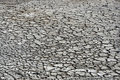 Free Dry Soil Royalty Free Stock Photo - 14582685