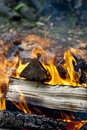 Free Camp Fire Burning In The Evening Stock Photos - 14586953