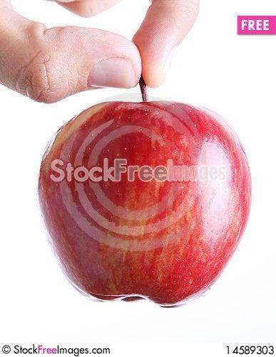 Free Fruit Stock Photos - 14589303