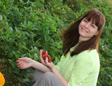 Free A Smiling Woman Picking Strawberries Royalty Free Stock Photos - 14580498
