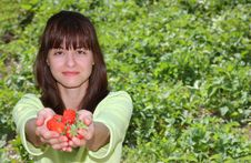 Free A Woman Giving Strawberries Stock Photos - 14580523