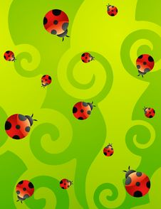 Free Red Ladybirds Royalty Free Stock Photos - 14581398