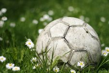 Free Old Soccerball / Football In The Grass Royalty Free Stock Photo - 14582415