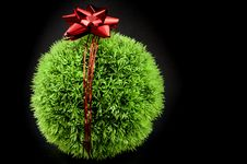 Grass Ball And Red Bow Stock Photo