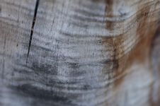 Free Weathered Wood Royalty Free Stock Image - 14583636