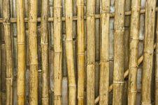 Free Bamboo Royalty Free Stock Photography - 14584937