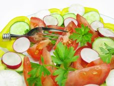 Free Vegetable Salad Royalty Free Stock Photos - 14585358