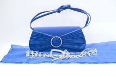 The Clutch Bag Royalty Free Stock Image