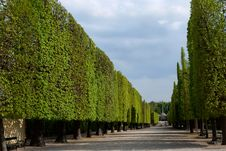 Free Park Of Schonbrunn Stock Images - 14587024