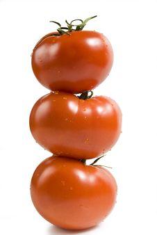 Free Three Tomatoes Royalty Free Stock Image - 14587126