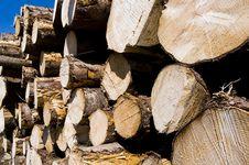 Free Wood Pile Royalty Free Stock Image - 14587166