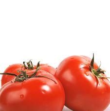 Free Three Tomatoes Stock Image - 14587301