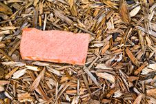Free Red Brick In Mulch Stock Photo - 14587990