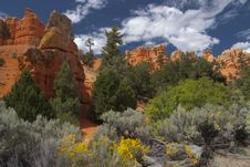 Free Red Canyon Stock Photo - 14588180
