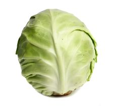 Free Cabbage Stock Photos - 14588343