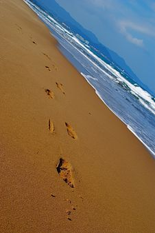 Free Footprints On A Beach Stock Photo - 14588640