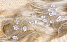Free Hair Texture Royalty Free Stock Photos - 14588728