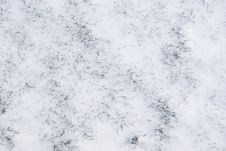 Free Green Grass Under The Fresh Snow Stock Photo - 14589290