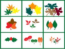 Free Leaf Motif Stock Images - 14589674